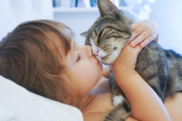 ребёнок обнимает кошку