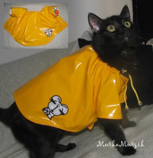 Дождевик для кошки
