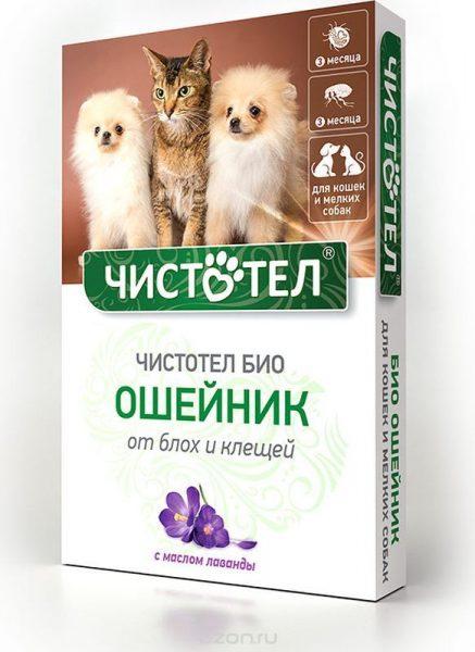 Ошейники для кошек: виды (с gps трекером, с феромонами, с маячком и пр) и особенности выбора для разных котов