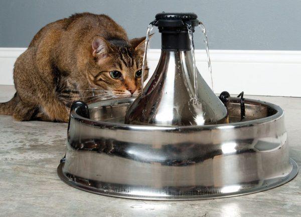Автопоилка-фонтан для кошки