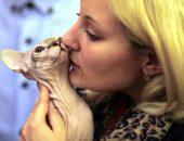 Девушка целует кота породы сфинкс