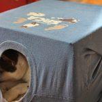Дом для кошки из коробки и футболки