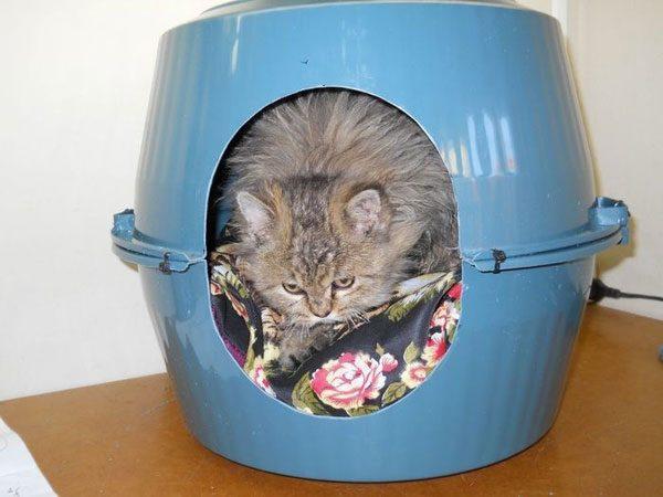 Дом для кошки из тазиков