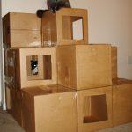 Дом-лабиринт для кошек