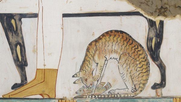 Фрагмент древнеегипетского рисунка с изображением кошки
