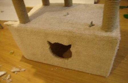 Игровой комплекс для кошки. Шаг 15. Наружняя часть