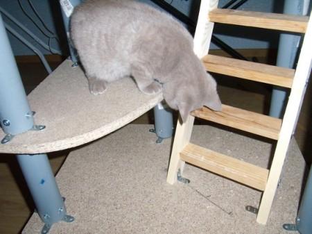 Игровой комплекс для кошки. Шаг 9