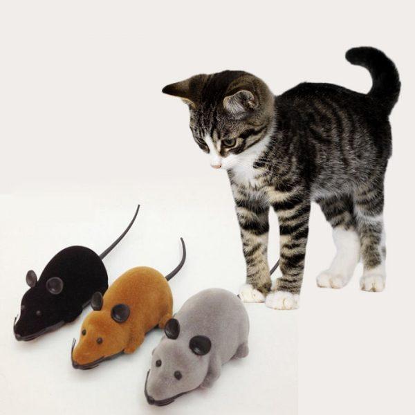 котёнок и игрушечные мыши на батарейках