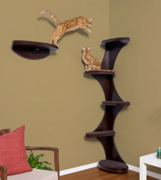 Кошки на деревянной конструкции