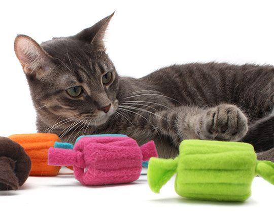 Кот и игрушки из пробок
