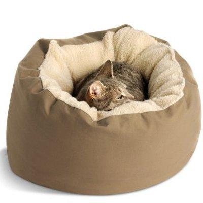 Кошка на бежевой лежанке