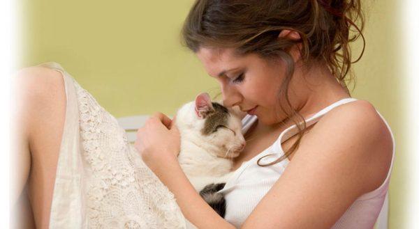 Кошка на руках у девушки