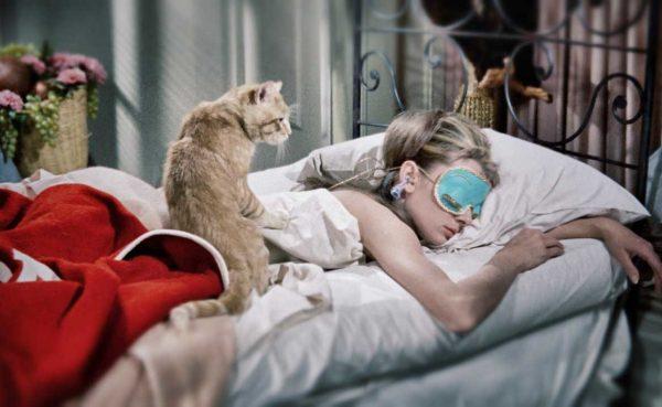 Кошка на спине спящей девушки
