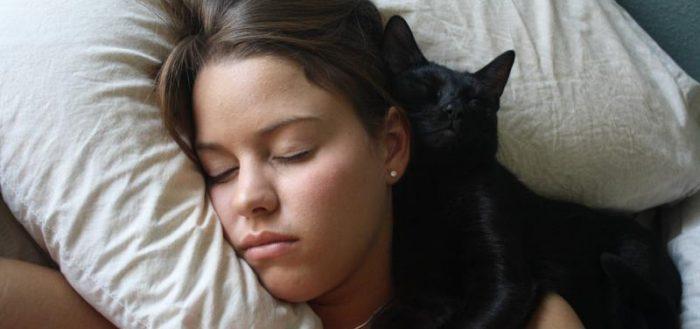 Кошка спит на голове человека: в чем причина