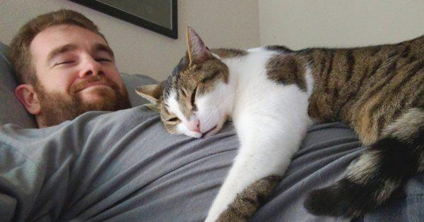 Кот лежит на груди у мужчины