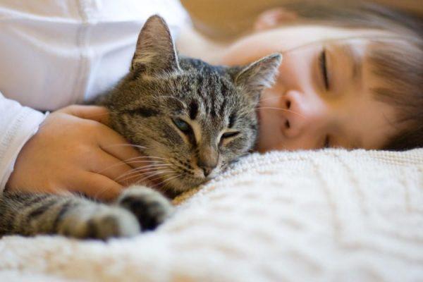 кот лежит рядом с ребёнком