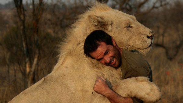 Лев в обнимку с человеком