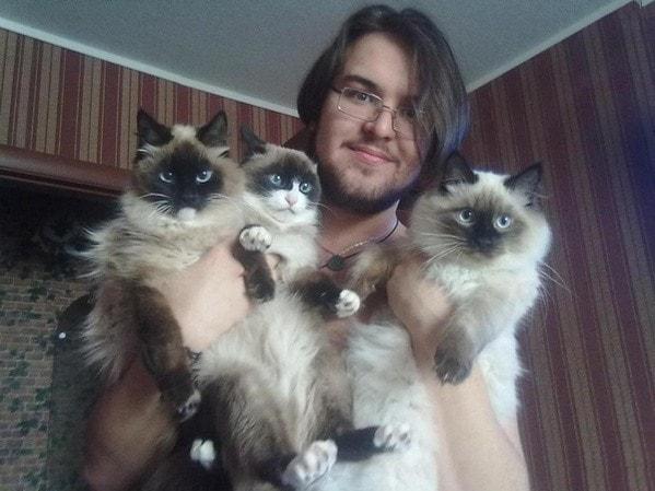 Мужчина с кошками