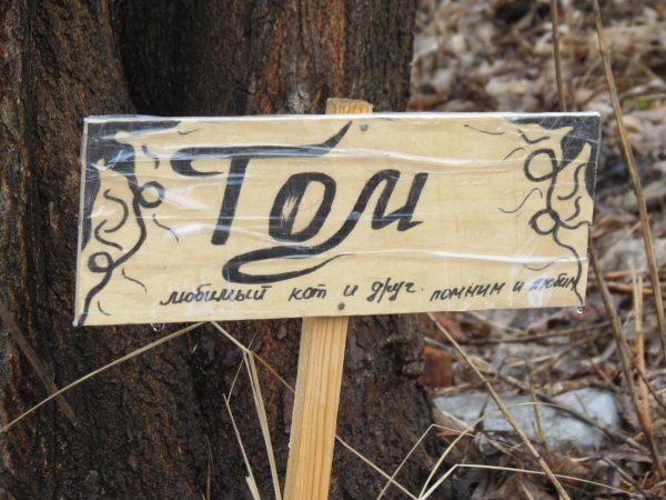 Надгробная табличка с надписью «Том»