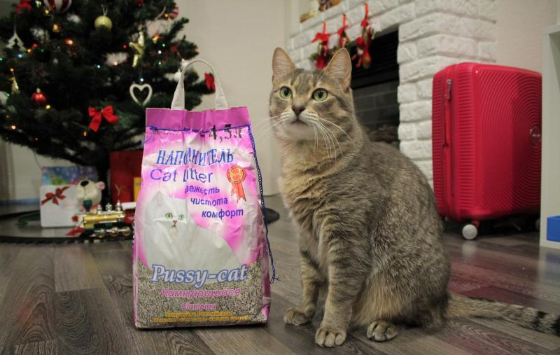 Наполнитель для лотка Pussy-Cat: производитель, свойства, отзывы