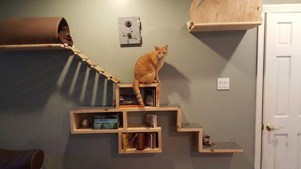 Навесной комплекс для кошки