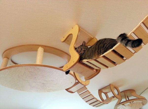 подвесной кошачий комплекс из дерева
