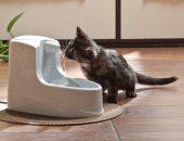 поилка для кошки фонтан