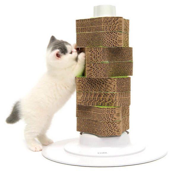 Привлекаем внимание котёнка к когтеточке
