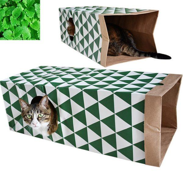 Кот в тоннеле из пакетов