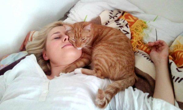 Рыжий кот лежит на лице хозяйки