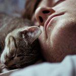 Котёнок спит с хозяином