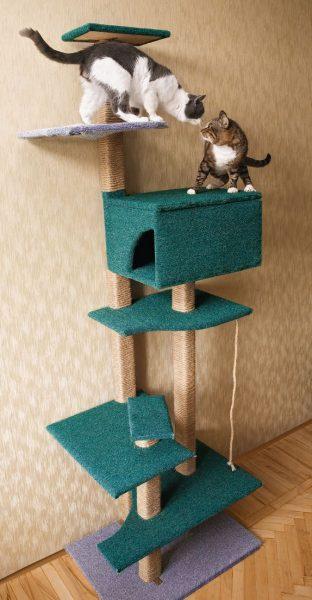 Самодельный игровой комплекс для двух котов