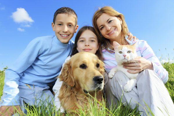 Семья с собакой и кошкой