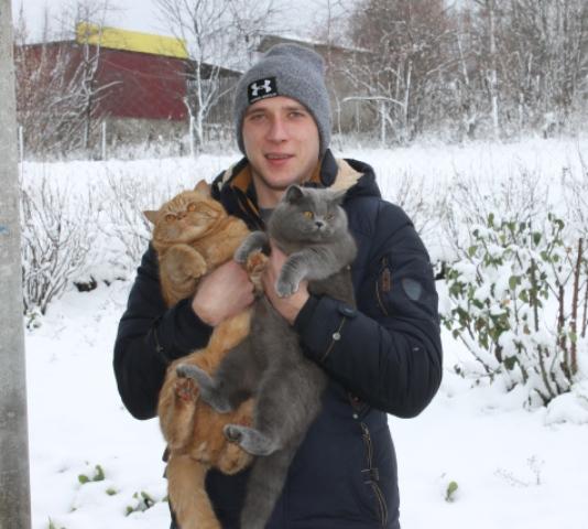 Хозяин с двумя котами на руках