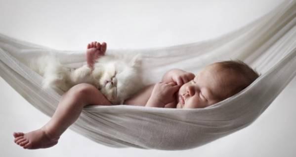 Спят ребёнок и котёнок