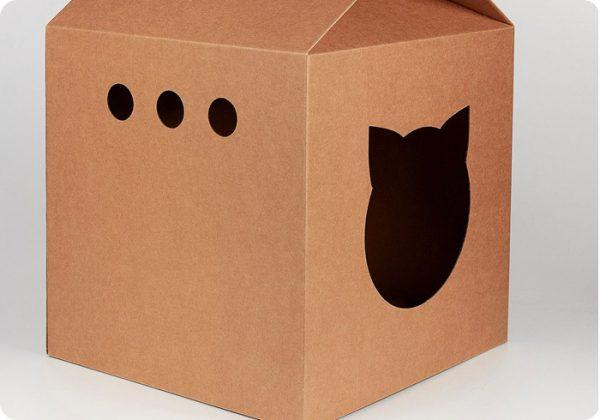 Туалет для кошки из картонной коробки