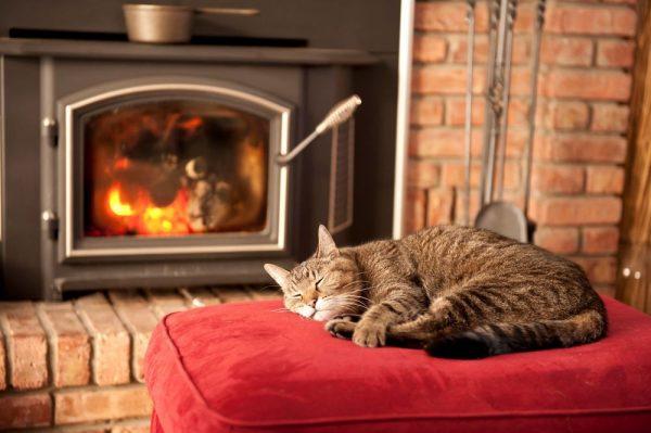Кот лежит на пуфе у камина