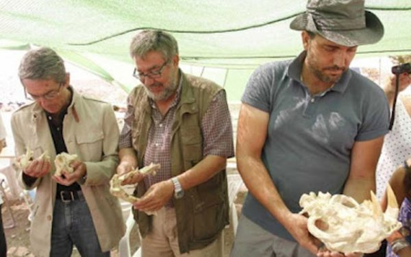 Палеонтологи демонстрируют свои находки