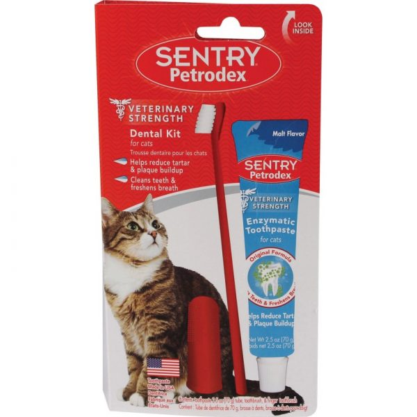 Зубная паста и щётка для кошек