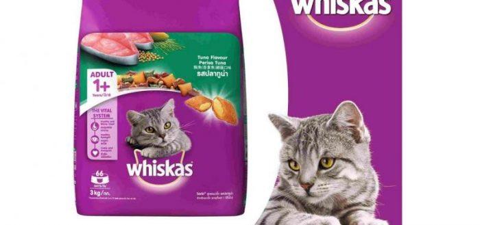 кот из рекламы Вискас и упаковка корма