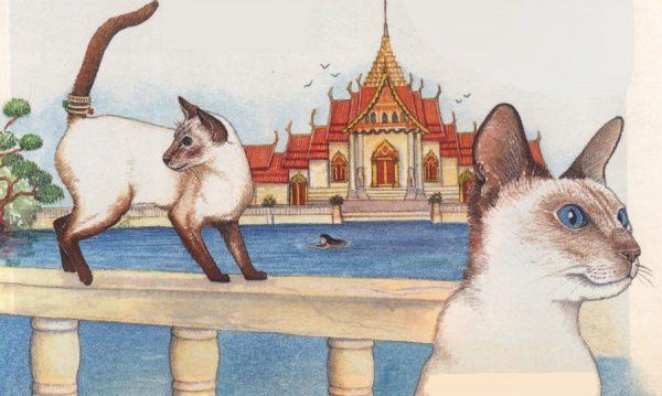 Легендарные тайские кошки