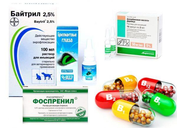 байтрил, фоспренил, витамины, аскорбиновая кислота и глазные капли