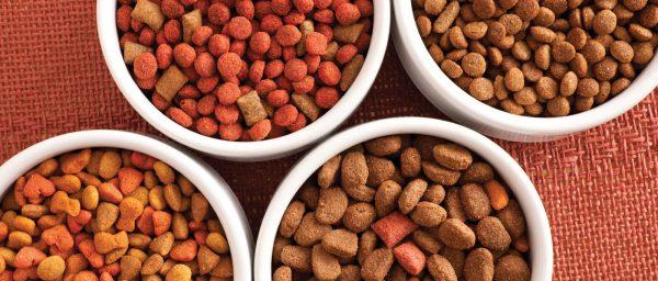четыре вида кошачьего корма