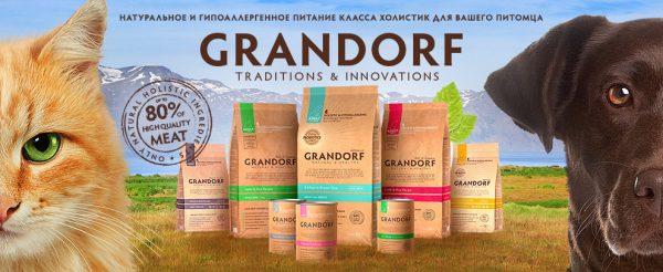 Логотип компании «Грандорф»