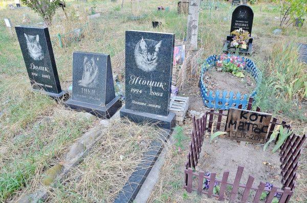 Памятники на кладбище домашних животных