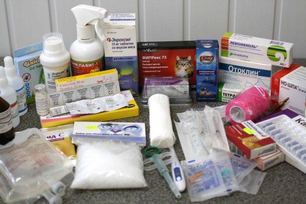 Содержимое ветеринарной аптечки