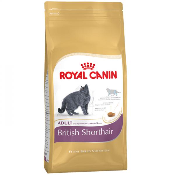 Сухой корм Royal Canin для британской короткошёрстной кошки