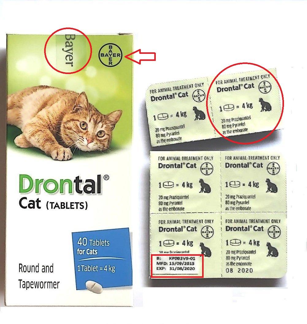 Дирофен для кошек: отзывы, инструкция по применению, противопоказания.
