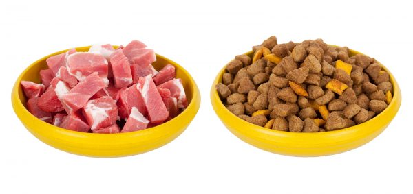 Две миски: с мясом и сухим кормом