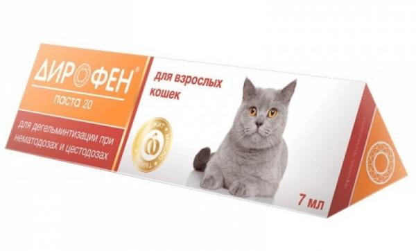 Таблетки от глистов для кошек: обзор глистогонных препаратов для котят и взрослых питомцев